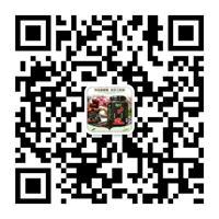 高端品质怀庆府传统手艺制作刘婆婆怀姜糖膏全国招收代理中