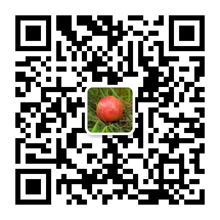 海南水果招代理,微商水果招代理一件代发
