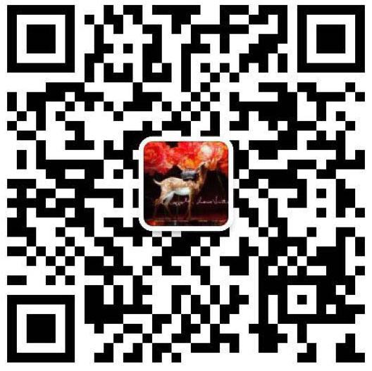 宝格丽b.zero1项链小红人项链代购级,支持对比正品
